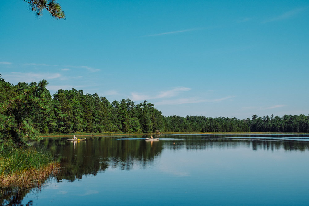 Wharton-State-Forest-Hiking-Mroczek-2868.jpg