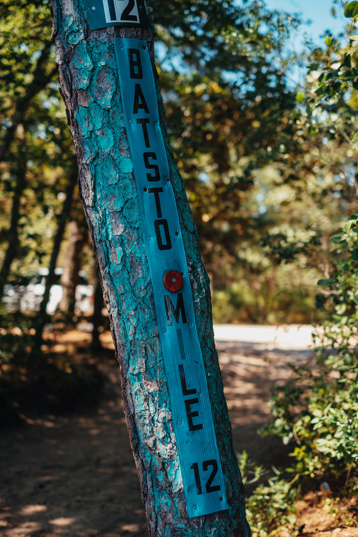 Wharton-State-Forest-Hiking-Mroczek-2876.jpg