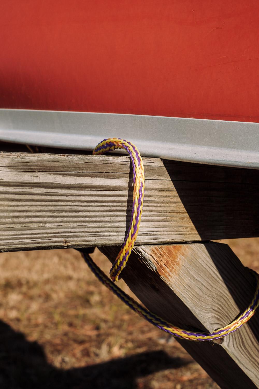 Backyard-Compostion-Mroczek-6932.jpg