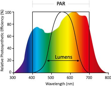 horti_LED_PAR_wavelength_range.jpg