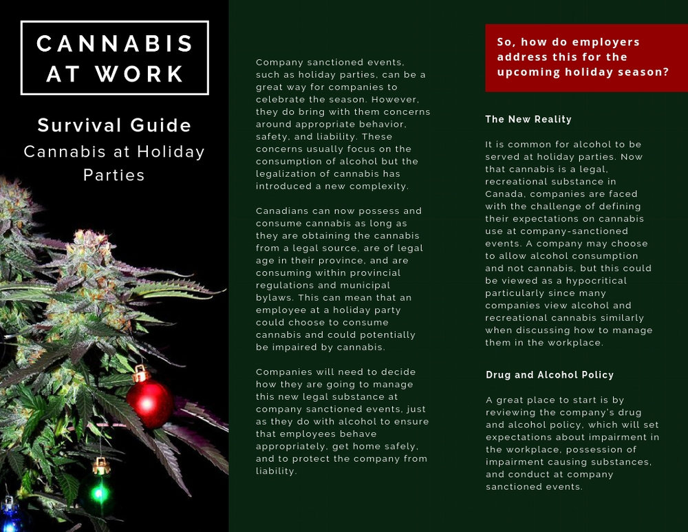 Survival Guide_ Cannabis at Holiday Parties.jpg