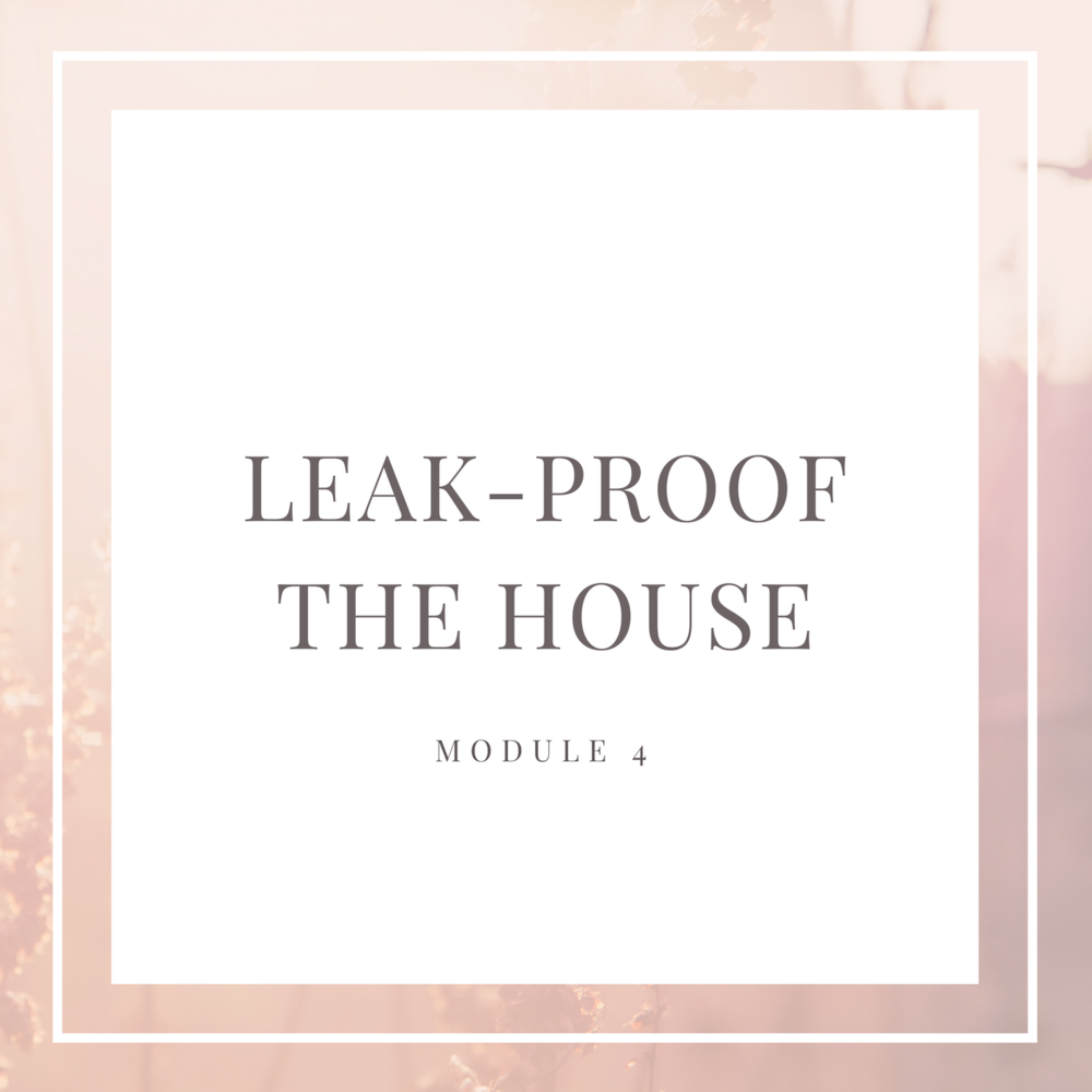 6-Figure Floor Plan Module 4: Leak Proof the House
