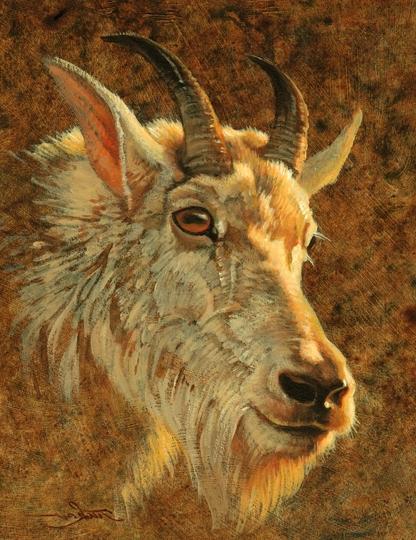 Ezra Tucker - goat.png
