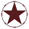 Logo star 100px.png