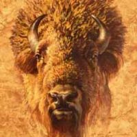 "Ezra Tucker's ""American Bison Portrait"" - one of four pieces accepted in the 2018 Western Art Show in Cheyenne."