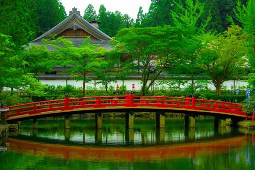zen garden.jpeg