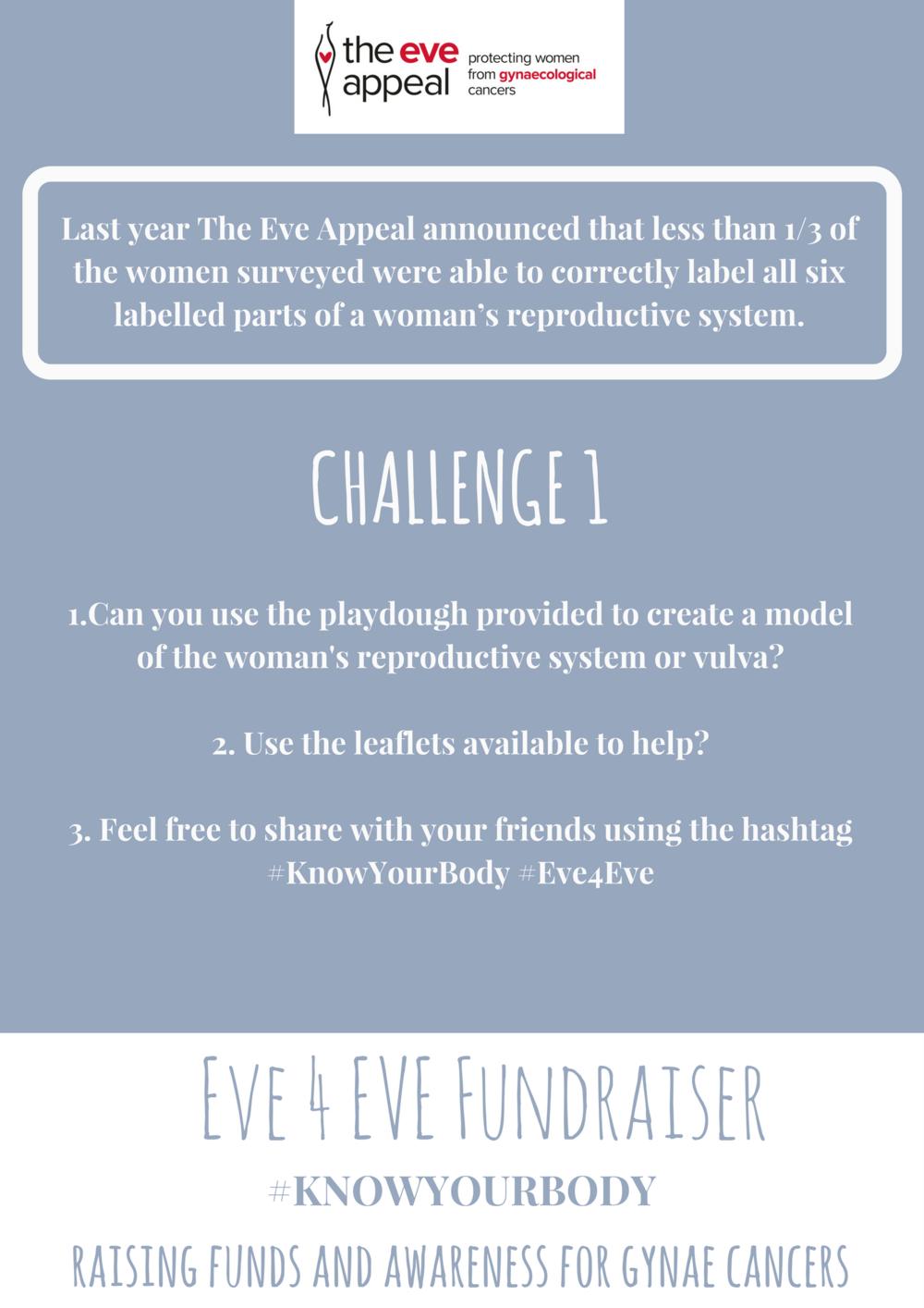 Challenge 1 challenge information sheet