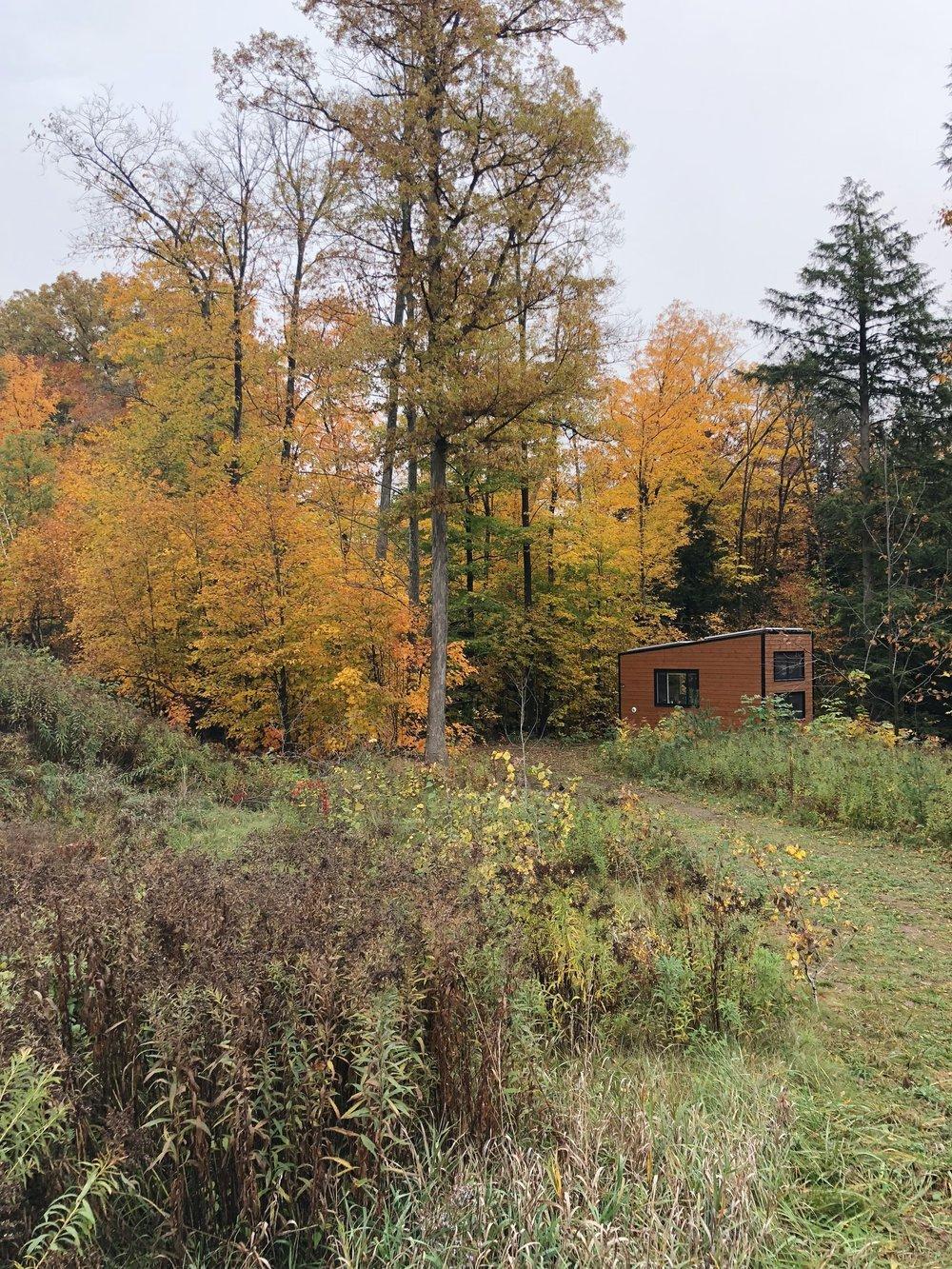 Cabinscape's Joni Cabin in Packenham, ON