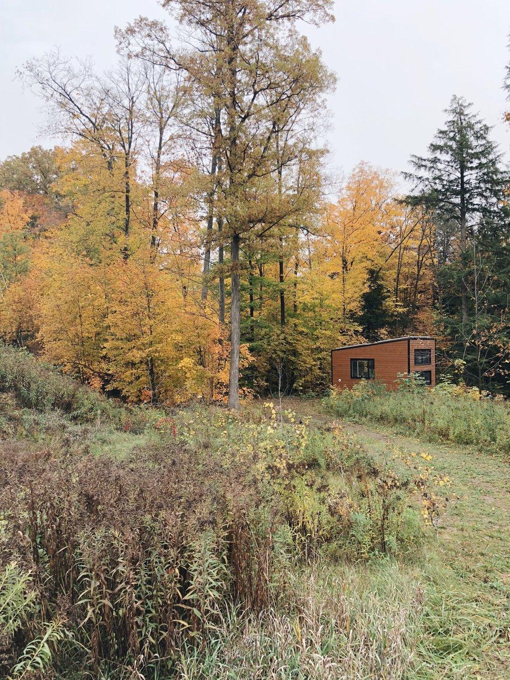 Joni Cabin Exterior