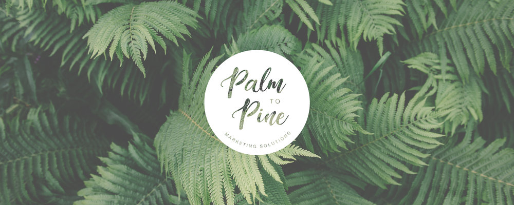 Palm to Pine_03.jpg