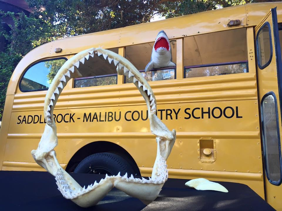 Shark Jaws at Malibu Wines shark event