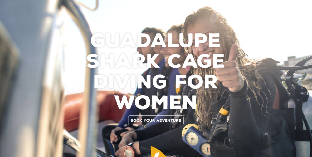Women Shark Divers Guadalupe