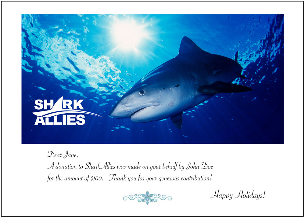 Shark Allies Gift Card Design 1