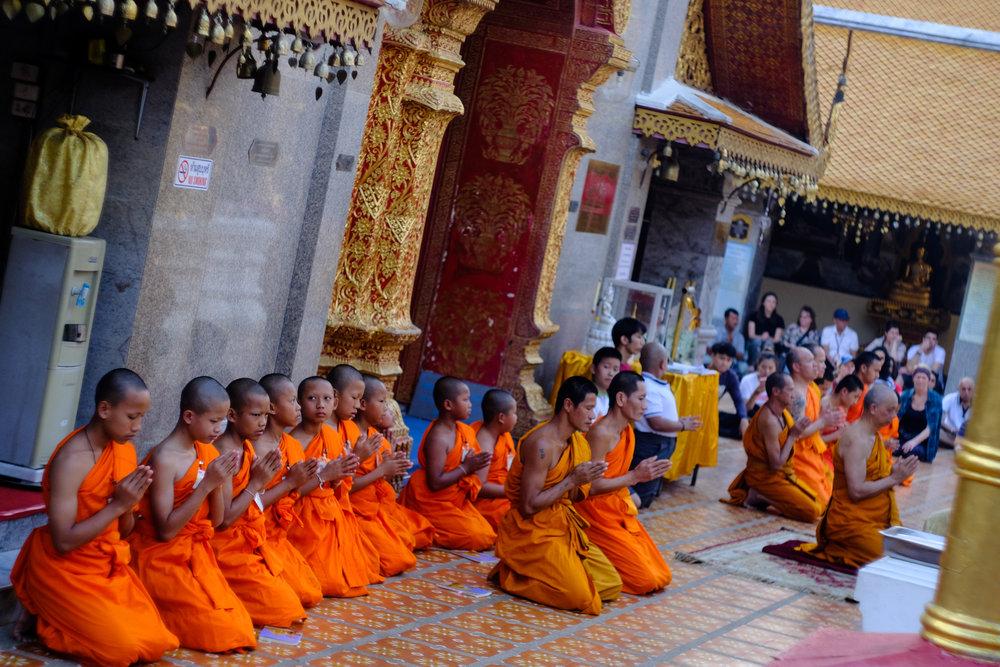 Chiang Mai-56.jpg