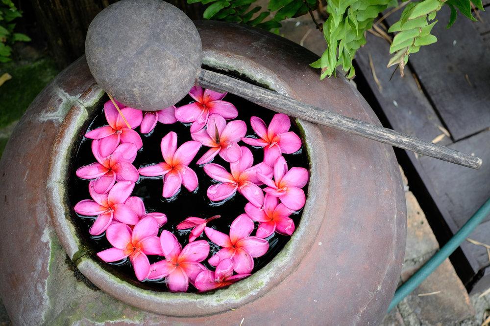 Chiang Mai-27.jpg