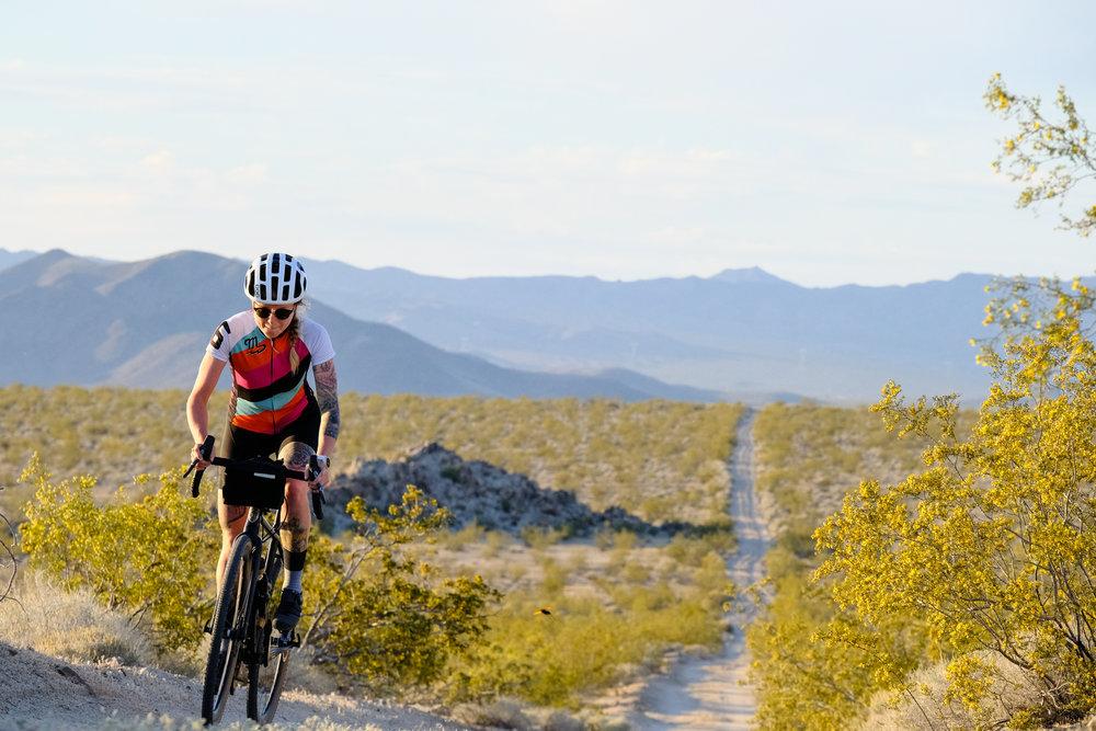 Mojave-7.jpg