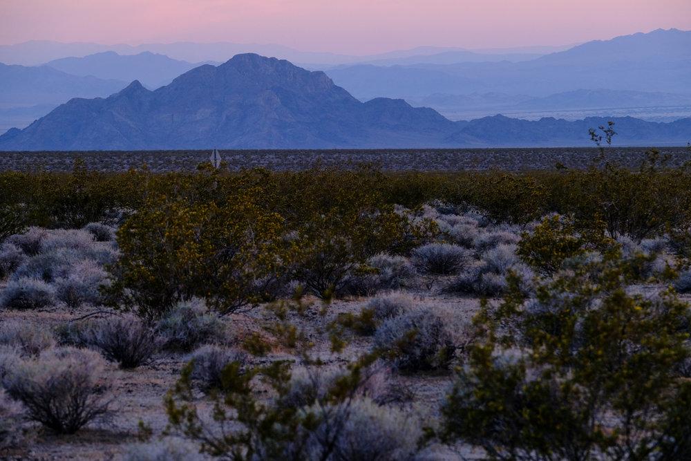 Mojave-2-2.jpg