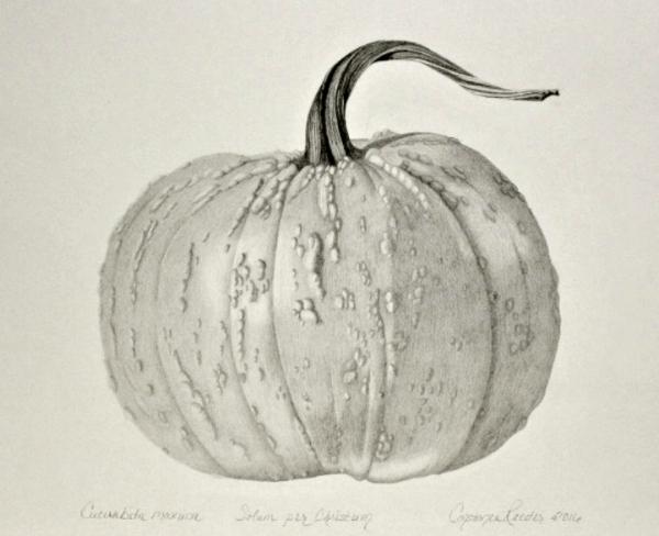 PumpkinCompositionFinal.jpg