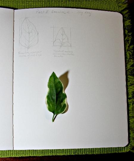 LeafPerspective2.jpg