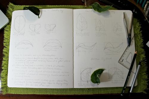 LeafPerspective8.jpg