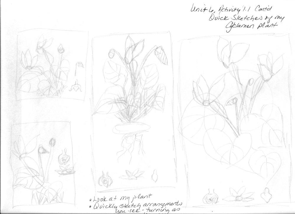 Unit 6, Activity 1.1 Second Page.jpeg