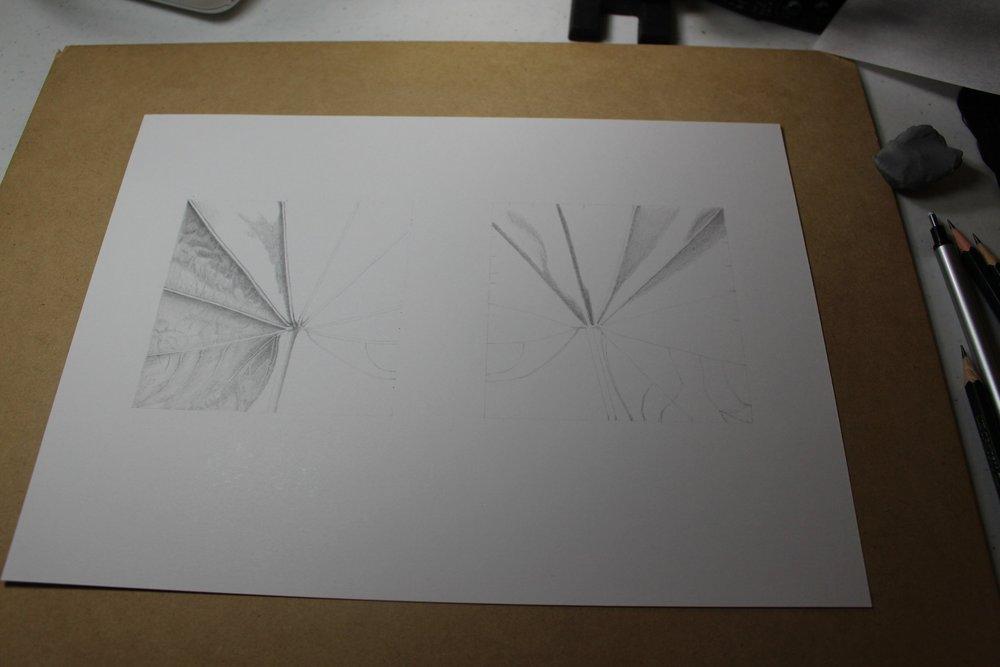 ASketch1.jpeg
