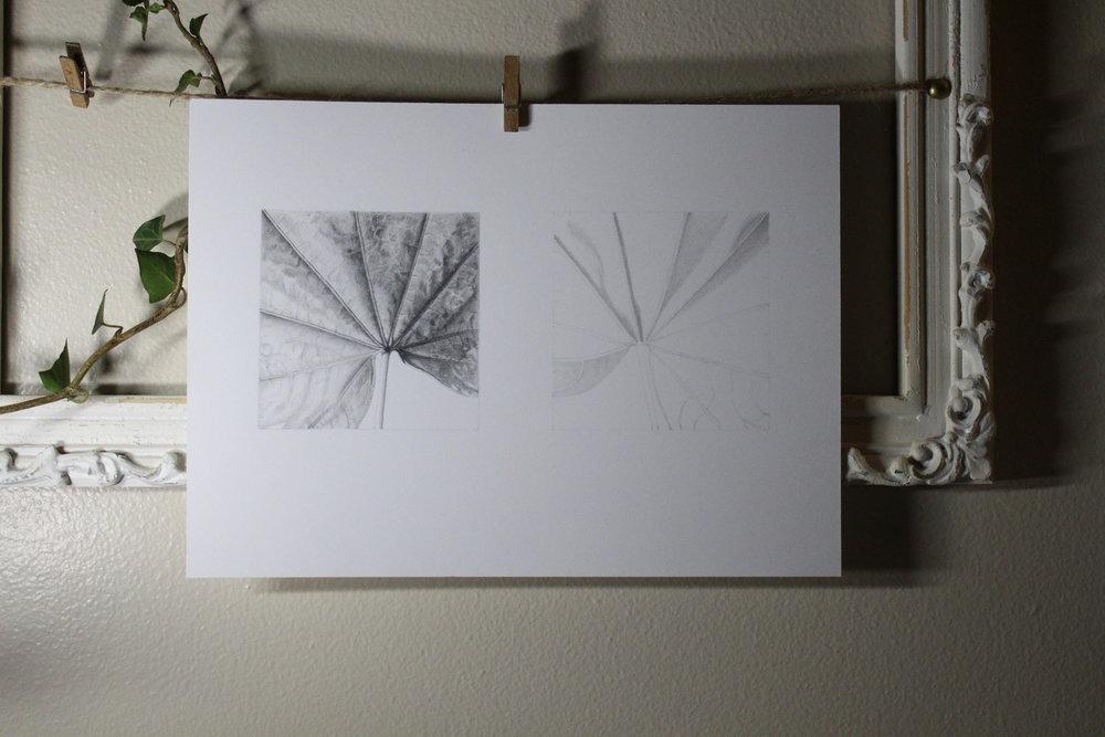 ASketch2.jpeg