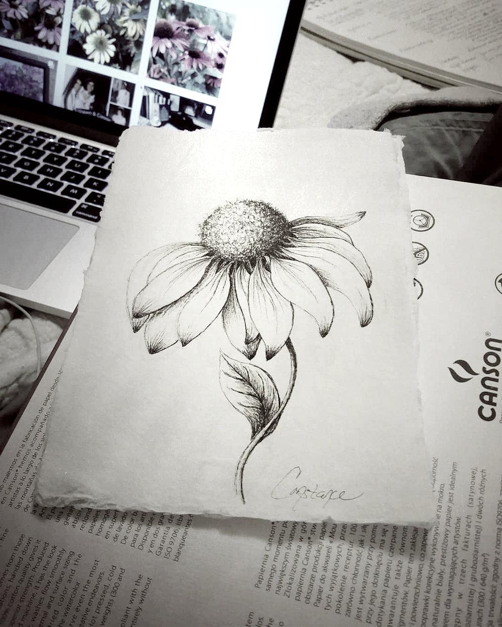 FloralsInInk.jpg