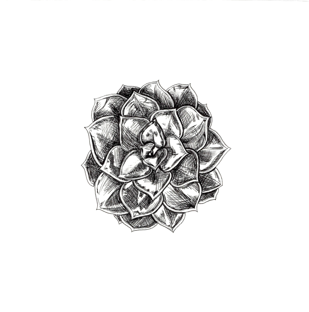 Screen Shot 2017-09-11 at 7.30.58 PM.png