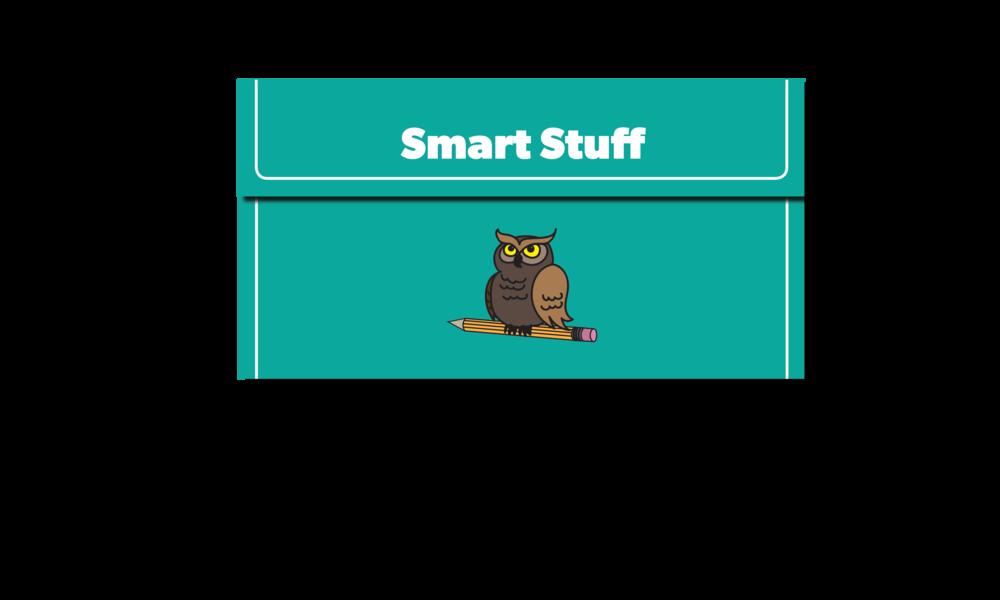 Smart Stuff Brochure Slide 1.png