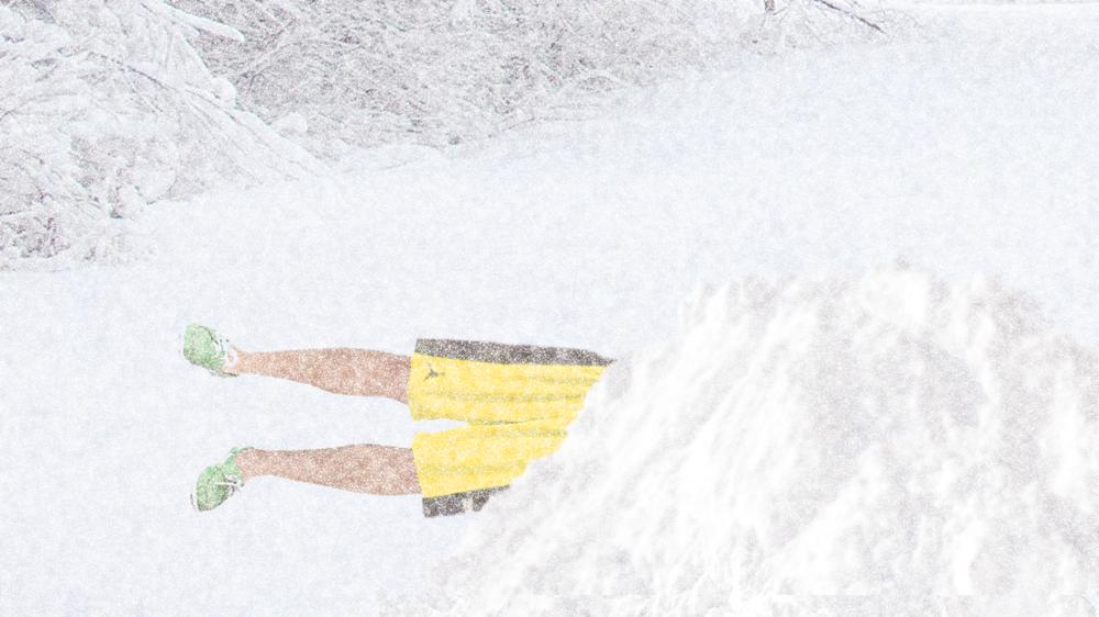 snowshorts.png