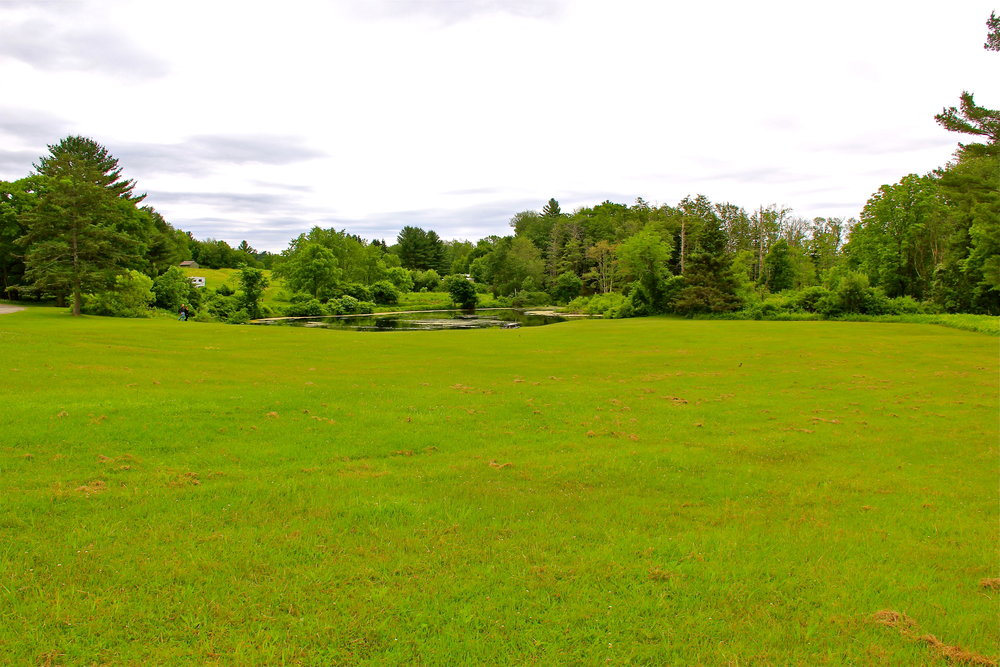 ongley-pond-field-2