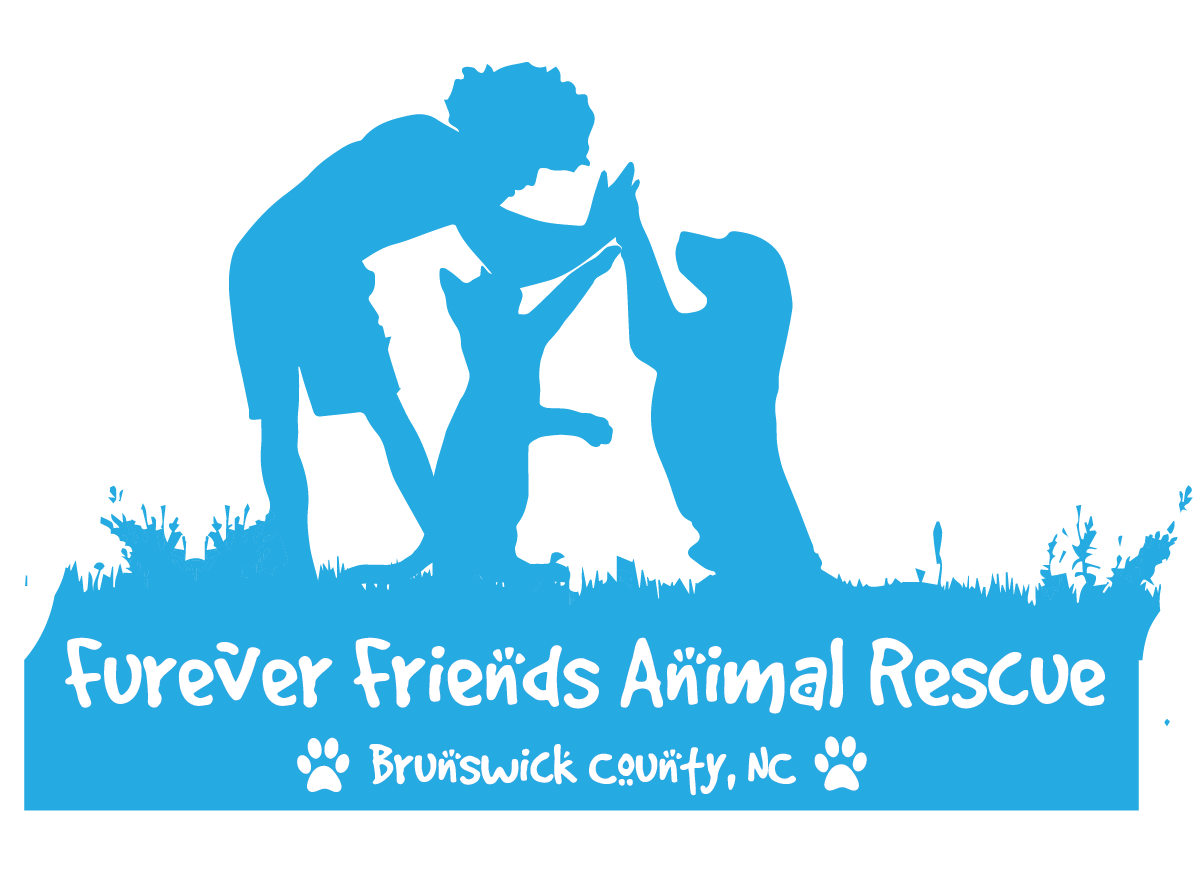 Furever Friends | Brunswick County, NC