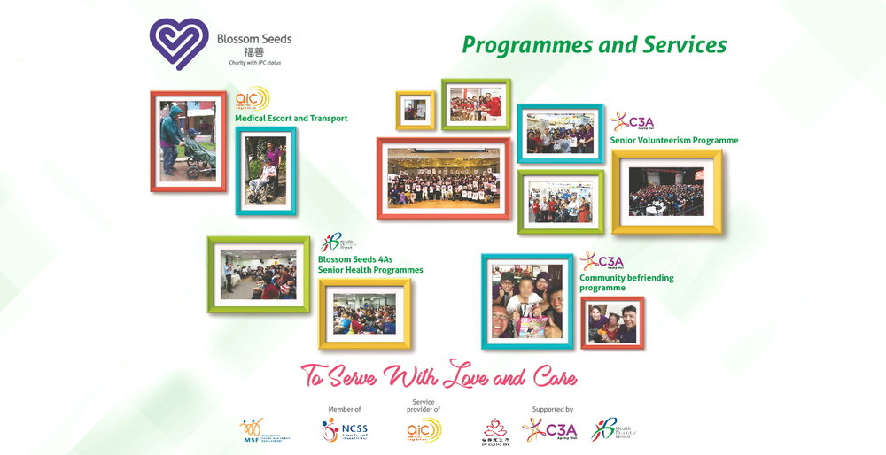 BSL Backdrop_programme and services.jpg