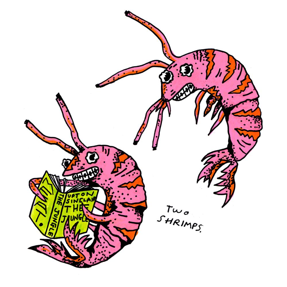 sundayshrimps.png