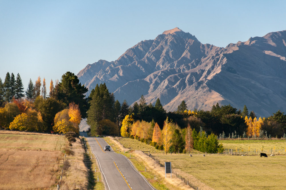Autumn Road central Otago