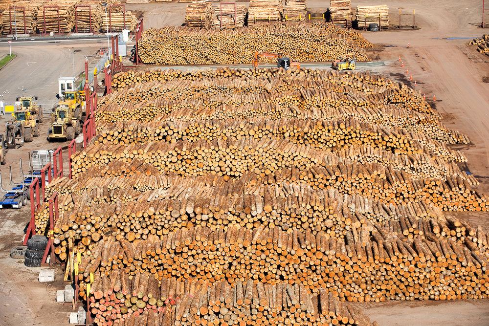 Log storage aerial