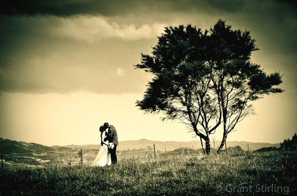 Nelson weddings-0795-2.jpg