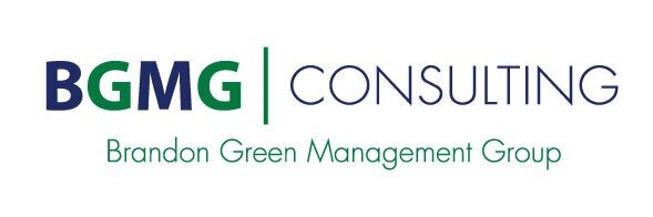 Government Management Consulting Services