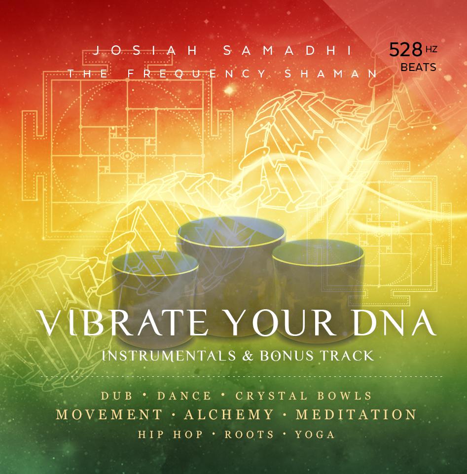 Vibrate your DNA-Bowls-Instrumental.jpg