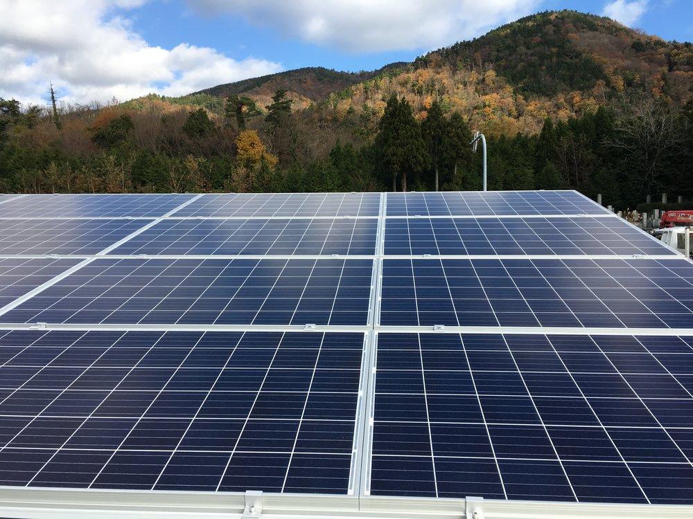 環境への貢献 - 本ファンドへの太陽光発電により、毎年のCO2排出が杉の木7150本分抑制されます。(※1)