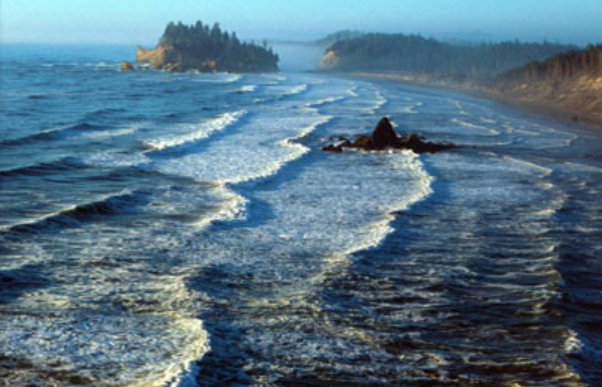Olympic coast national marine sanctuary
