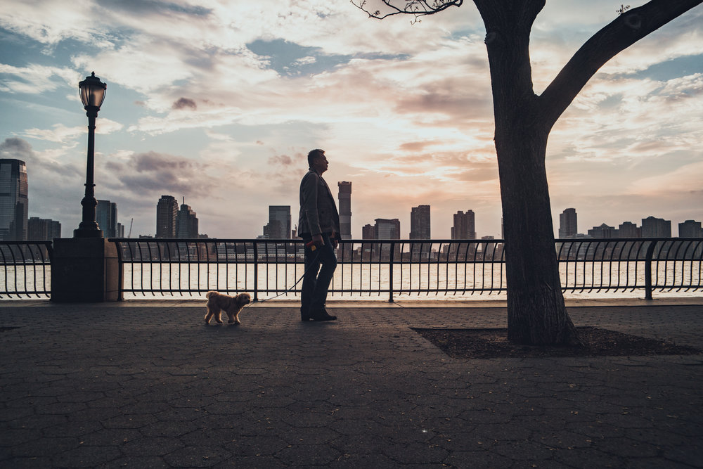 NYC_stijn_hoekstra-295.jpg