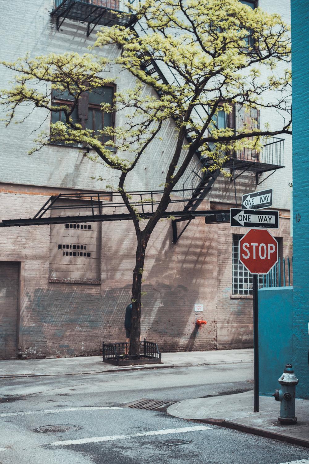 NYC_stijn_hoekstra-186.jpg