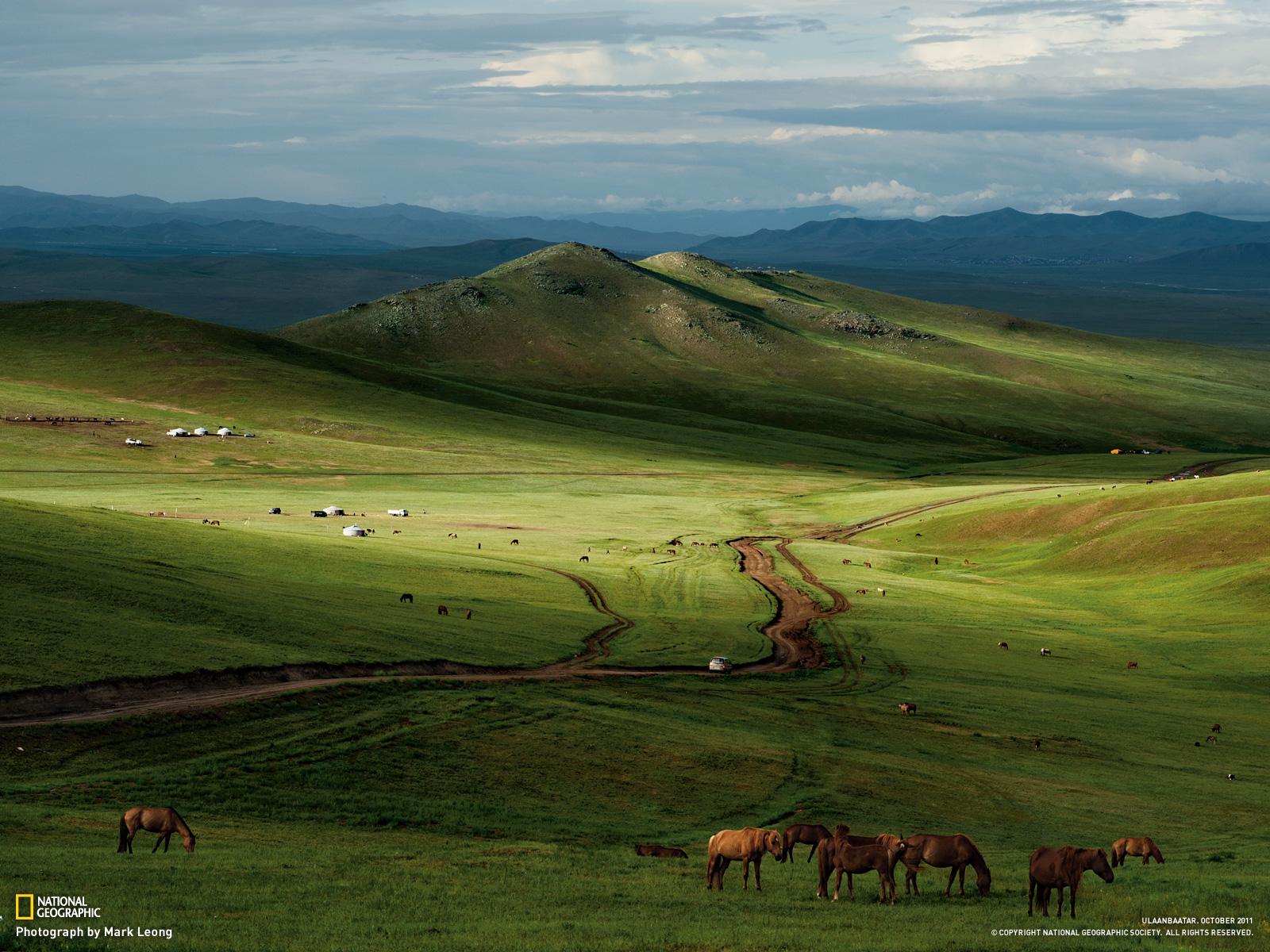 Mongolian steppe image nat geo.jpg