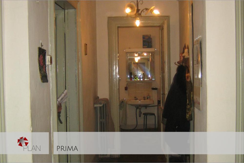 PRIMA1.png