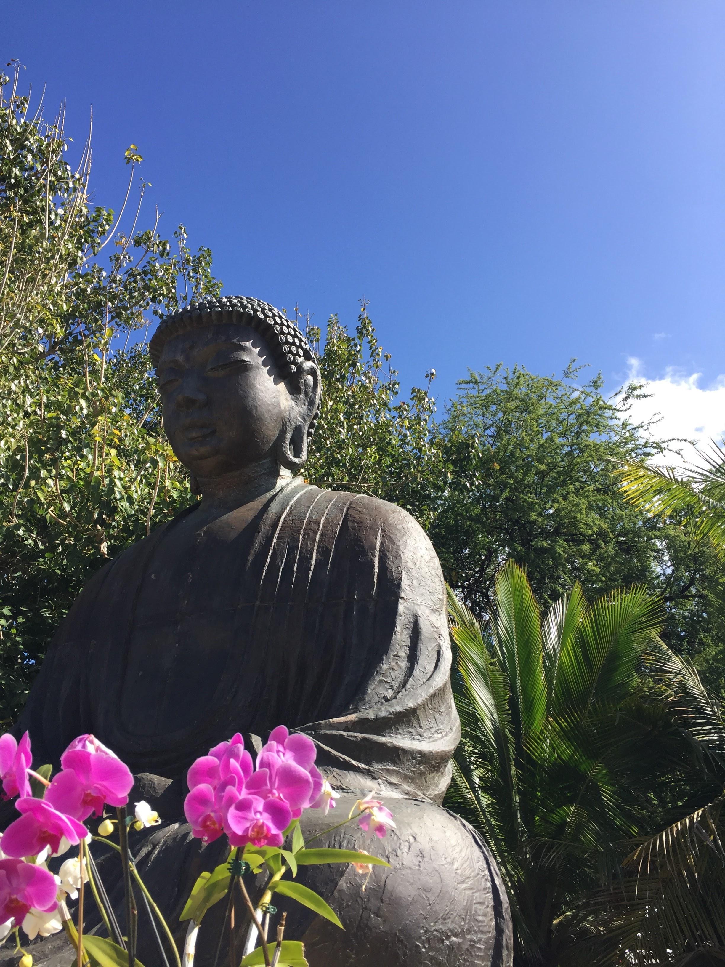 Buddah for Blog