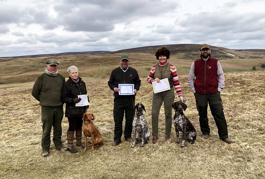 Grading Award at WGDS Grouse Pointing Test, Painscastle, Wales     Judges:  Lee Loveridge/ Peter  Szalai