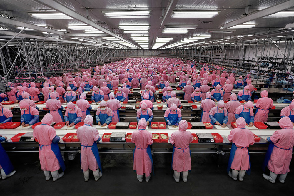 Manufacturing #17  Deda Chicken Processing Plant, Dehui City, Jilin Province, China, 2005
