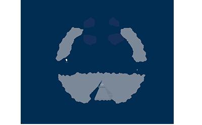 AO-official-logo SMALLER.png